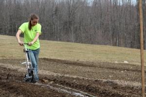Kaarina Seeding