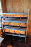 Seedling racks